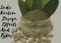 Indo Kratom Dosage, Effects And Types