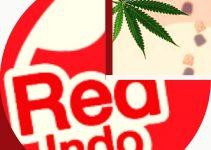 Red Indo Kratom