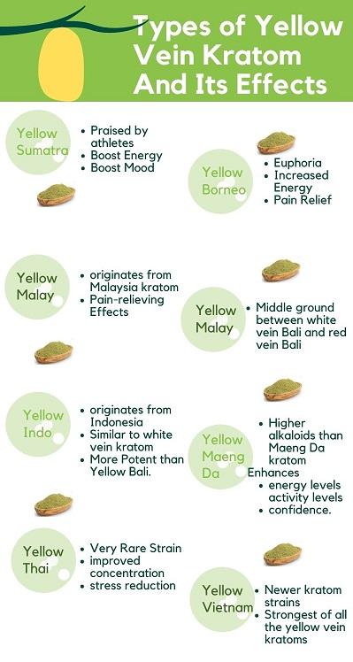Yellow Vietnam Kratom Types