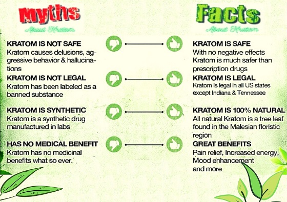 Facts Vs Reality about kratom