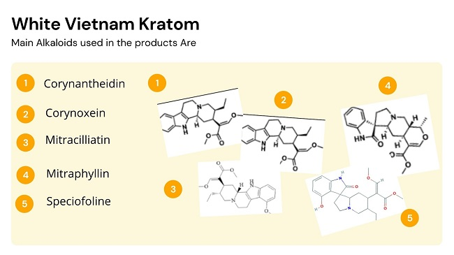 White Vietnam Kratom Alkaloids